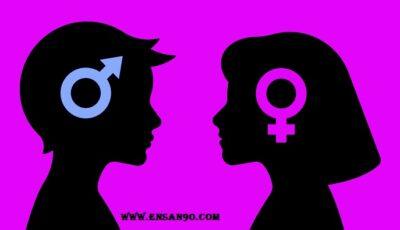 التربية والثقافة الجنسية  للأطفال من سن ٢ الى ١٢ – انسان