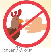 إنفلونزا الطيور – الاسباب والاعراض والعلاج